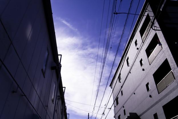 Photos: 2009-10-09の空