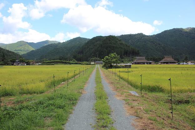 京都 美山町之秋
