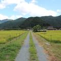 写真: 京都 美山町之秋