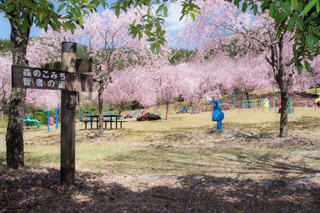 智者の丘公園 音の広場