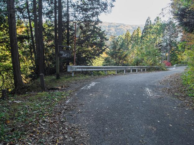 井川夢の吊橋 入口