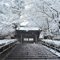 写真: 円覚寺総門雪景色