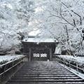 Photos: 円覚寺総門雪景色