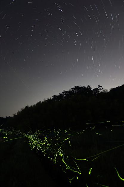 Photos: 巡る星の下で舞う