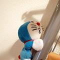Photos: 090708_Dora01
