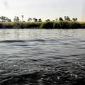 写真: ナイルの流れ