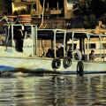 写真: ナイル川フェリー1)