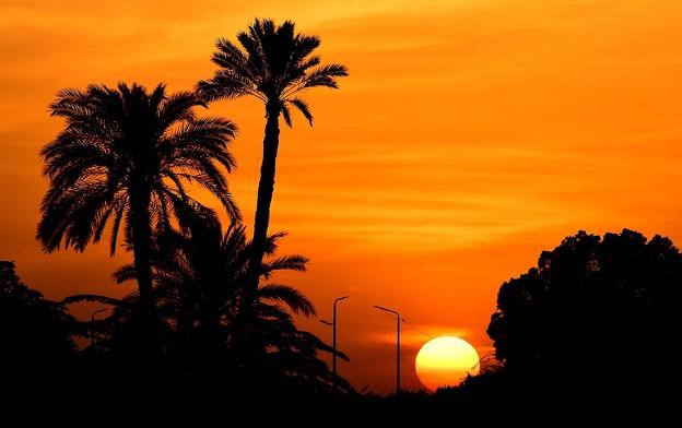 写真: カルナックの日没