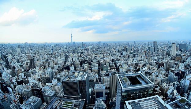 日本橋からの眺め