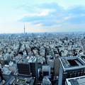 写真: 日本橋からの眺め