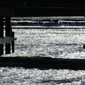 3351 渡月橋