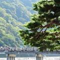 3352 渡月橋と岩田山