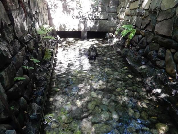 写真: 8 お清水