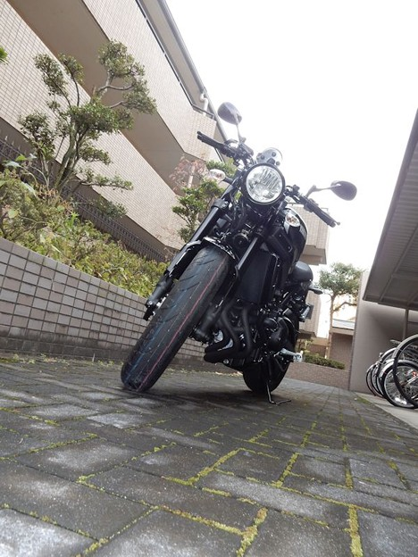 写真: XSR900 (2)