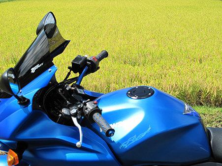 稲穂とZ750S