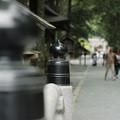 写真: 小国神社参道入り口