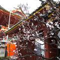 写真: 神明田神社