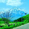 写真: 初夏の蝦夷富士~♪