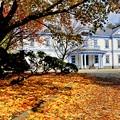 写真: 晩秋の豊平館~今日から11月ですね~♪