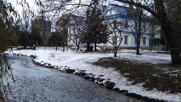 Photos: 真冬の札幌から秋の名古屋へ行って来ます~(*^^*)♪