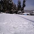 写真: 雪に慣れてないもんで、こん...