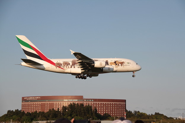 Emirates Airbus A380-861 A6-EOM -1-