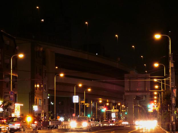 灯りの「道しるべ」と光の「軍団」