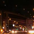 写真: 灯りの「道しるべ」と光の「軍団」