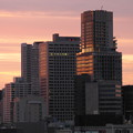 夜明けの高層ビル群