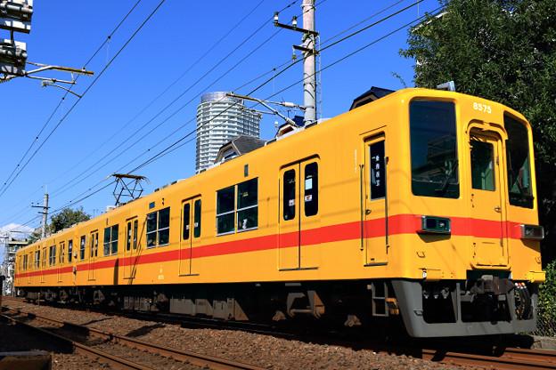 2D8A6446