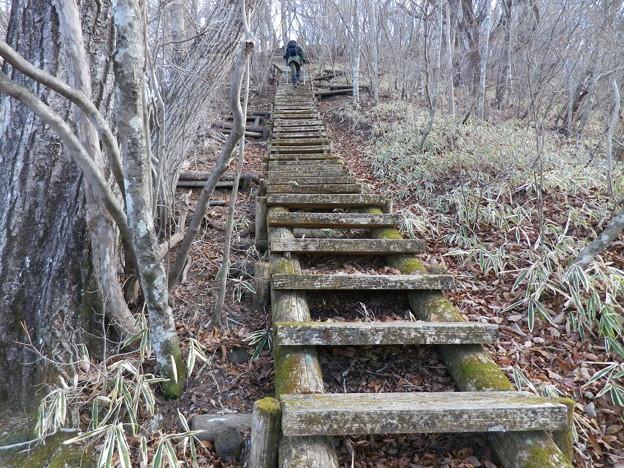 IMGP4577 天目山へと続く長い木段
