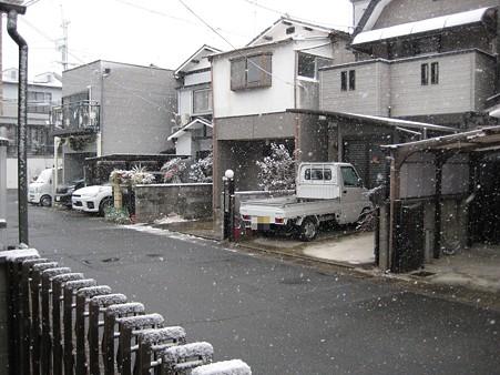 20101231_yuki1