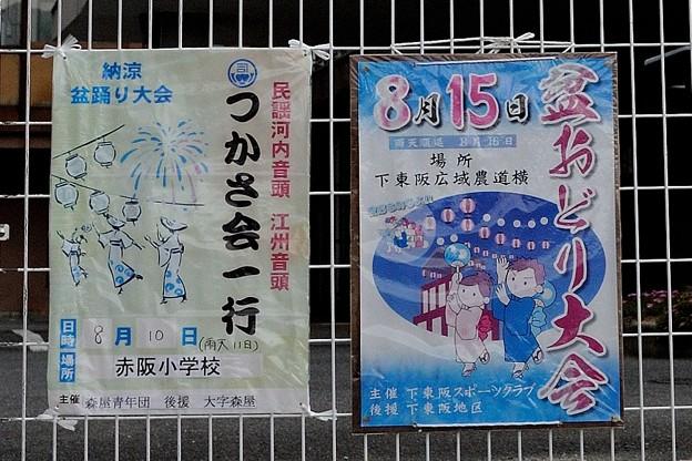 千早赤阪村 8/10 赤阪小学校盆踊り