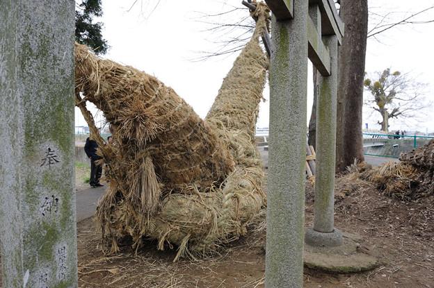 お綱祭 2010/02/11 13:13