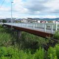 写真: 越後交通栃尾線鉄橋跡