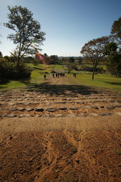 多賀城政庁跡から延びる古代道路