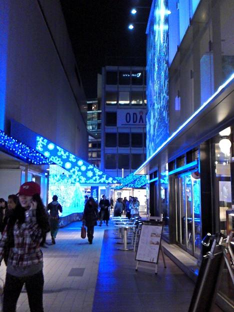 モザイク通りby新宿