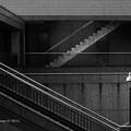 写真: Imagery Monochrome