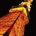 写真: 東京タワーここにあり!