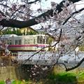 春色沿線14