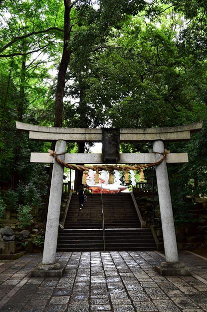 世田谷八幡宮(1)