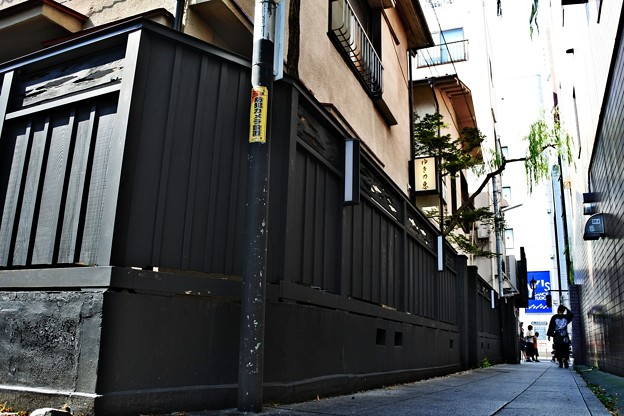 黒塀通り(1)