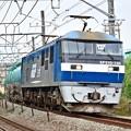 桃太郎135号