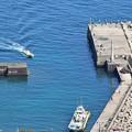 写真: 江之浦漁港