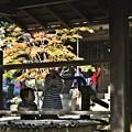 Photos: 招福殿の手水舎