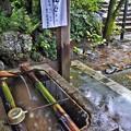 写真: 秋雨の手水舎