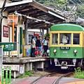 写真: 江ノ電の夏景