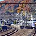 Photos: 秋色沿線(23)