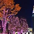 Photos: 夜の街路地(5)