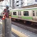 Photos: 小便しない小僧